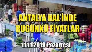 Antalya Hal'inde 11 Kasım 2019 Pazartesi Günkü Fiyatlar