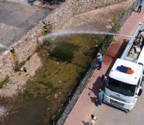 Antalya'da Kuruyan Derede Can Çekişen Balıklara 'Can' Suyu