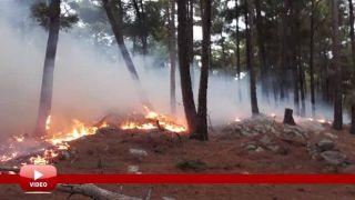 Antalya Manavgat'ta Gülen Dağına Düşen Yıldırım Yangına Yol Açtı