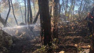 Antalya Konyaaltı'nda Çamlık Yangını